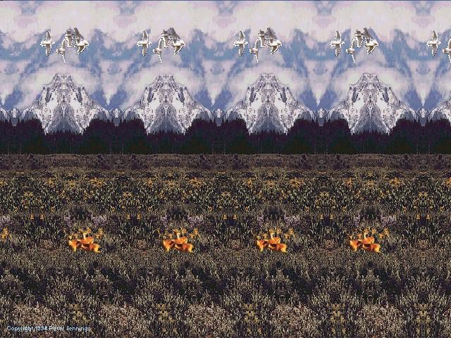 Mountain Spring 1994